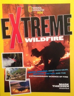 extreme-wildfire