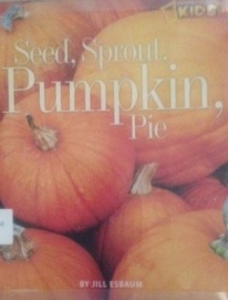 sprout-seed-pumpkin-pie