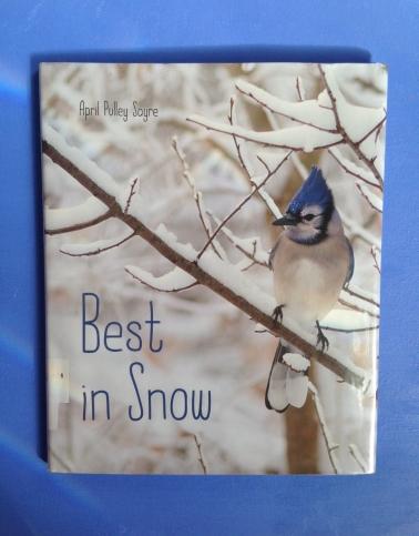 best-in-snow.jpg