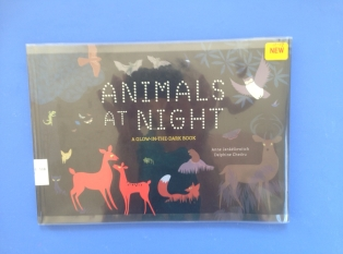 animals-at-night.jpg